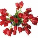 Gaver til Valentine's Day – find den perfekte gave her