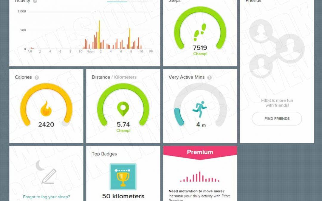 Test af Fitbit flex armbåndet